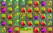 Dream Fruit Farm